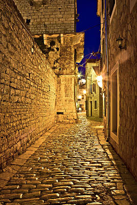 Cactus - Narrow stone street in Vodice by Brch Photography