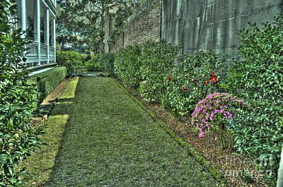Narrow Urban Garden Art Print