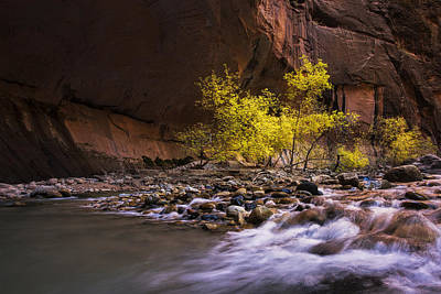 Zion National Park Photograph - Narrows At Autumn by Andrew Soundarajan