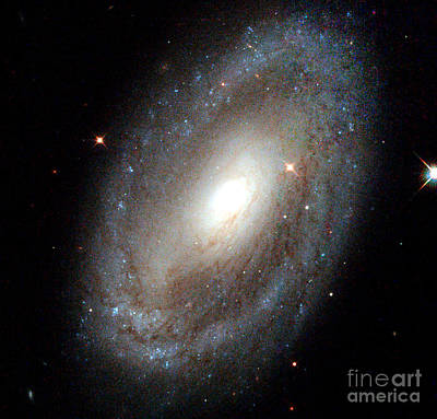 Photograph - Nasa Spiral Galaxy by Rose Santuci-Sofranko