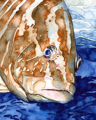 Painting - Nassau Grouper Portrait by Pauline Walsh Jacobson