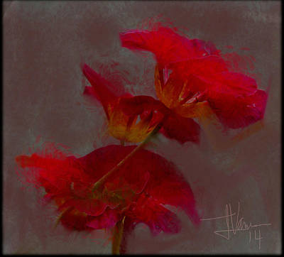 Digital Art - Nasturtiums 2 by Jim Vance