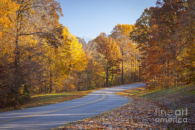 Franklin Tennessee Photograph - Natchez Trace by Brian Jannsen