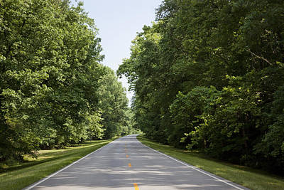 Natchez Trace Parkway Photograph - Natchez Trace Parkway In Cobert County by Carol M Highsmith