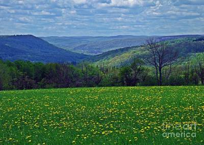 Photograph - Nathanael Dyke's Valley by Christian Mattison