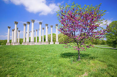 Corinthians Photograph - National Capitol Columns, Corinthian by Panoramic Images