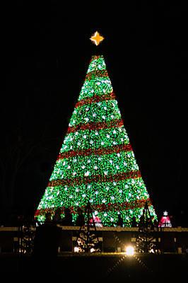 Photograph - National Christmas Tree 2015 by Karen Saunders