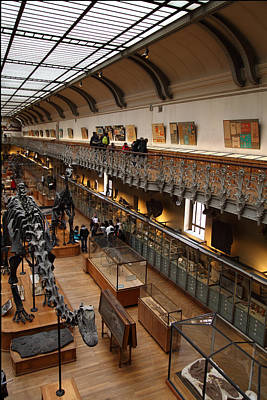 National Museum Of Natural History - Paris France - 011327 Art Print by DC Photographer