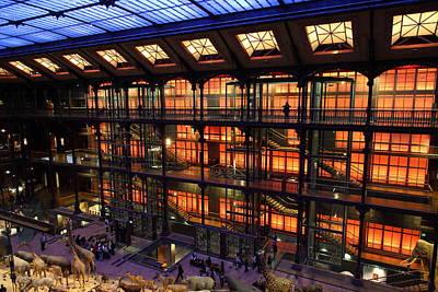 National Museum Of Natural History - Paris France - 011363 Art Print