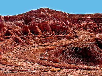 Photograph - National Navajo Tribal Park by Bob and Nadine Johnston