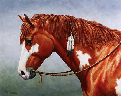 Native American War Horse Painting - Native American Pinto Horse by Crista Forest