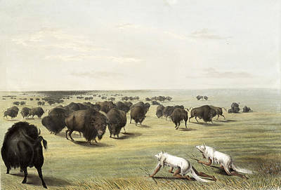 America First Party Painting - Native Americans Camouflaged by Science Source