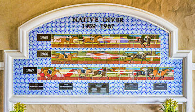 Digital Art - Native Diver Mural by Photographic Art by Russel Ray Photos
