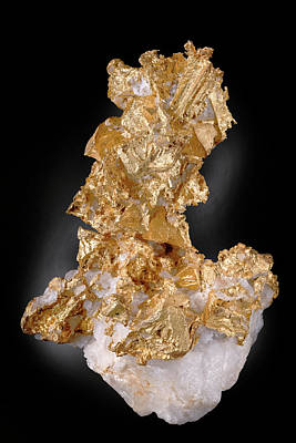 Silicate Photograph - Native Gold On Quartz by Natural History Museum, London