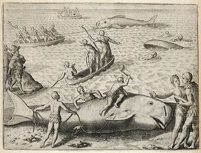 Nova Scotia Drawing - Natives Of Nova Scotia  Whaling by Mary Evans Picture Library