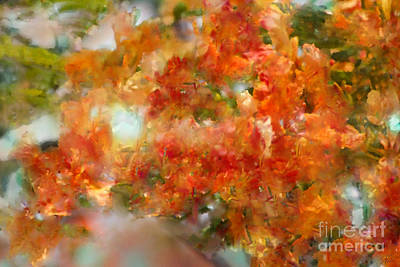 Digital Art - Natural Abstractions #12 The Orange Tree by Nola Lee Kelsey