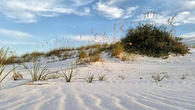 Photograph - Natural Beauty Of Destin by JC Findley