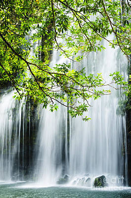Waterfall Photograph - Natural Beauty by Oscar Gutierrez