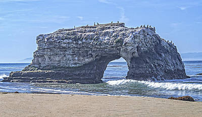 Photograph - Natural Bridge At Santa Cruz by L J Oakes