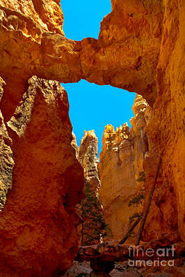 Natural Bridge Bryce Art Print by Robert Bales