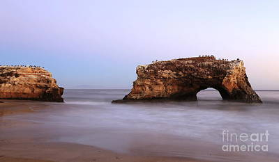 Photograph - Natural Bridges 1 by Theresa Ramos-DuVon