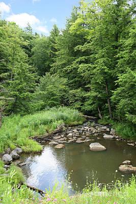 Photograph - Natural Creek Landscape by Suzi Nelson