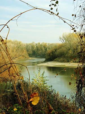 Blue Fig Photograph - Natural Framing Sacramento River  by Pamela Patch