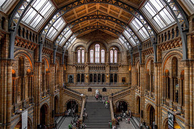 Photograph - Natural History Museum by Brian Grzelewski