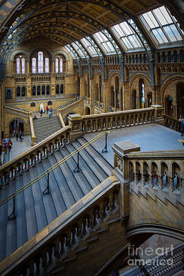 Natural History Museum London Photograph - Natural History Museum by Inge Johnsson