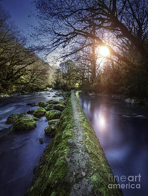 Natural Path Between Two Streams Art Print by Evgeny Kuklev