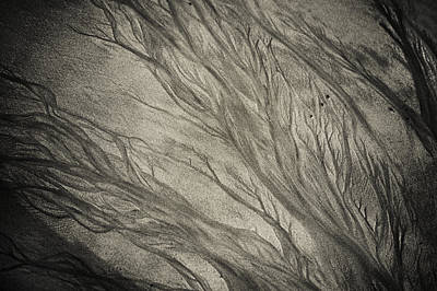 Photograph - Natural Patterns 1. Goan Sand by Jenny Rainbow