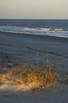 Photograph - Natural Sand Dunes And Grasses by Byron Jorjorian