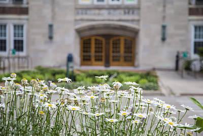 Photograph - Natural Science Building And Flowers by John McGraw