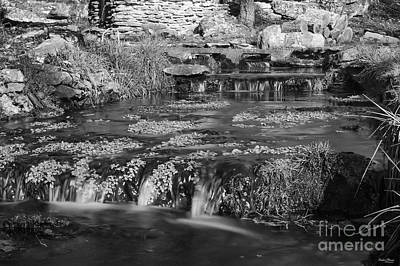Photograph - Natural Spring Made Creek by Jennifer White