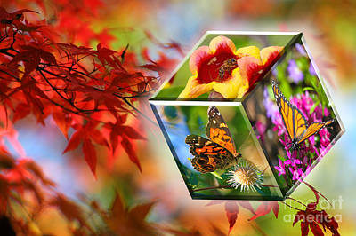 Natural Vibrance Art Print
