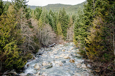 Photograph - Island Stream by Roxy Hurtubise