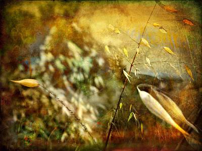 Photograph - Nature #13. Calling You by Alfredo Gonzalez