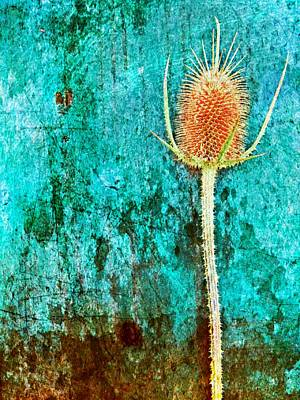 Art Print featuring the digital art Nature Abstract 13 by Maria Huntley