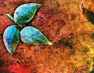 Nature Abstract 17 Art Print by Maria Huntley