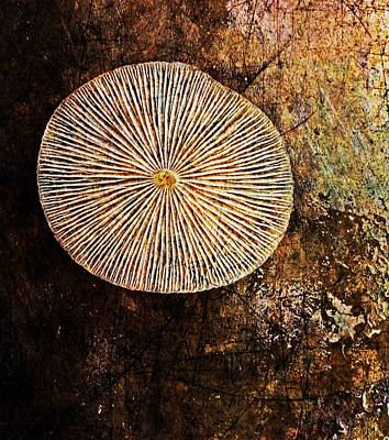 Art Print featuring the digital art Nature Abstract 22 by Maria Huntley