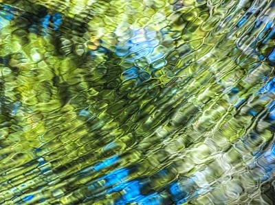 Photograph - Nature Abstract by Carolyn Marshall