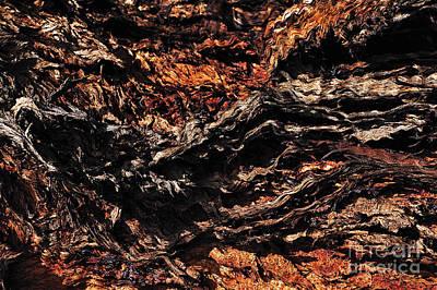 Nature Abstract - Texture Art Print