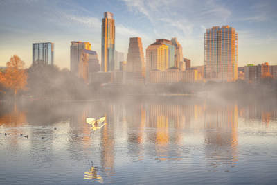Nature And The Austin Skyline From The Boardwalk Art Print by Rob Greebon