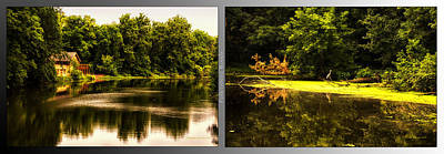 Nature Center 01 Looking For Breakfast Fullersburg Woods 2 Panel Art Print by Thomas Woolworth