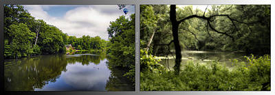 Nature Center 02 Tree Silhouette Fullersburg Woods 2 Panel Art Print by Thomas Woolworth