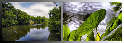 Nature Center 02 Water Leaf Fullersburg Woods 2 Panel Art Print by Thomas Woolworth