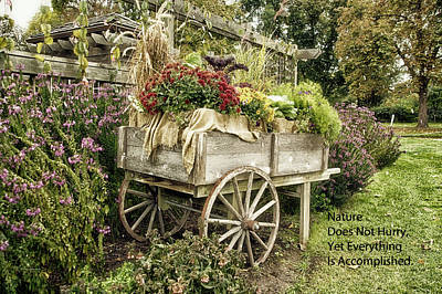Photograph - Nature Does Not Hurry Floral Garden Cart by Thomas Woolworth