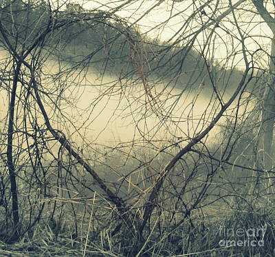 Photograph - Heart Of Nature by France Laliberte