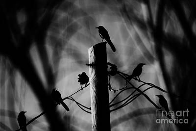 Art Print featuring the photograph Nature In The Slums by Jessica Shelton
