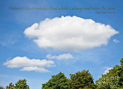 Photograph - Nature Is Like A Cloud by Liz Leyden